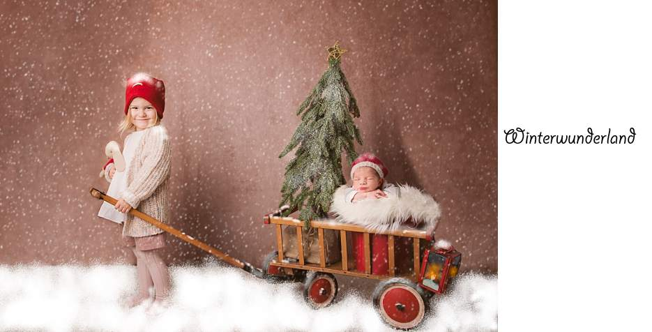 Weihnachtsshooting