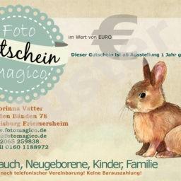 Gutschein-Neugeborenenshooting